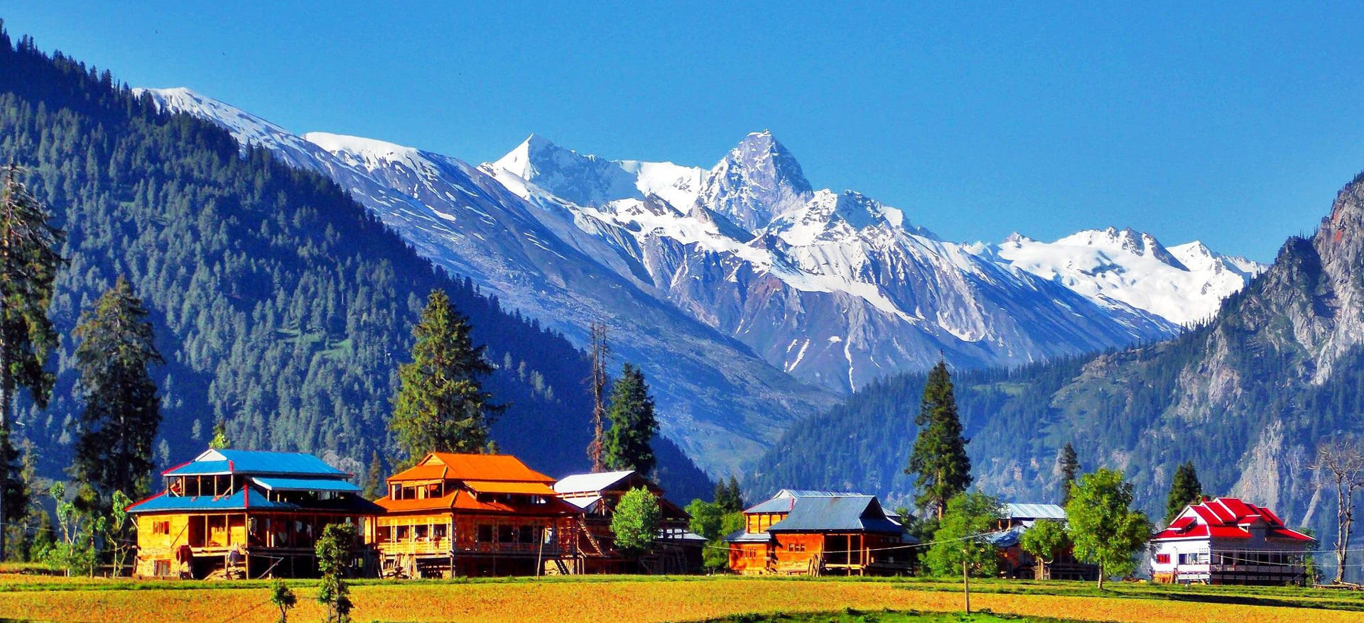 All of Kashmir Valley Packages
